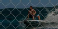 SURF SUP BODYBOARD